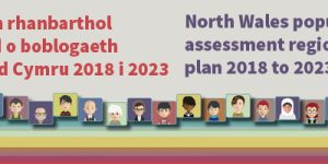 North Wales population assessment regional plan